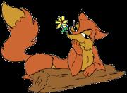 Firefox-Add-ons für Webmaster